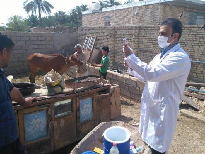 رئیس دامپزشکی شهرستان شادگان خبرداد