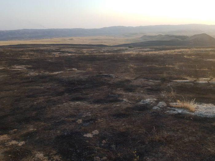 آتش سوزی زمین های کشاورزی و منابع طبیعی منطقه جهانگیری مسجدسلیمان