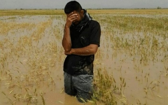 پرداخت خسارت سیل ۹۸ کشاورزان خوزستان در سراب وعده های جهاد کشاورزی !