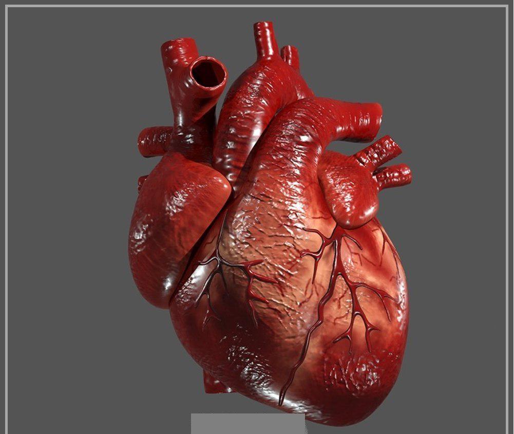 کرونا قلب یک زن را منفجر کرد