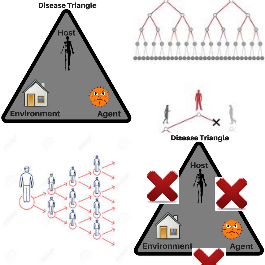 کاربرد مثلث  همه گیر شناسی در  مقابله با کووید _۱۹