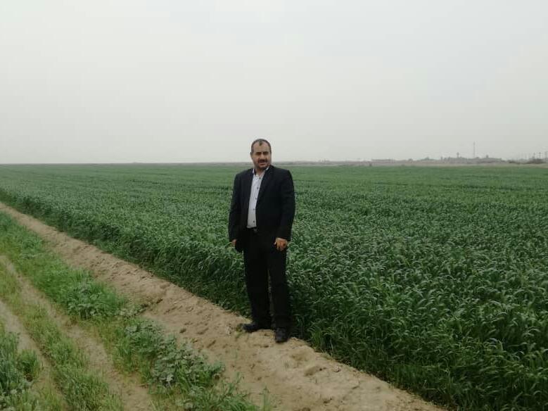 مدیر جهاد کشاورزی شهرستان کارون خبرداد: آغاز برداشت دانه های سیاه با بهره ای طلایی در شهرستان کارون