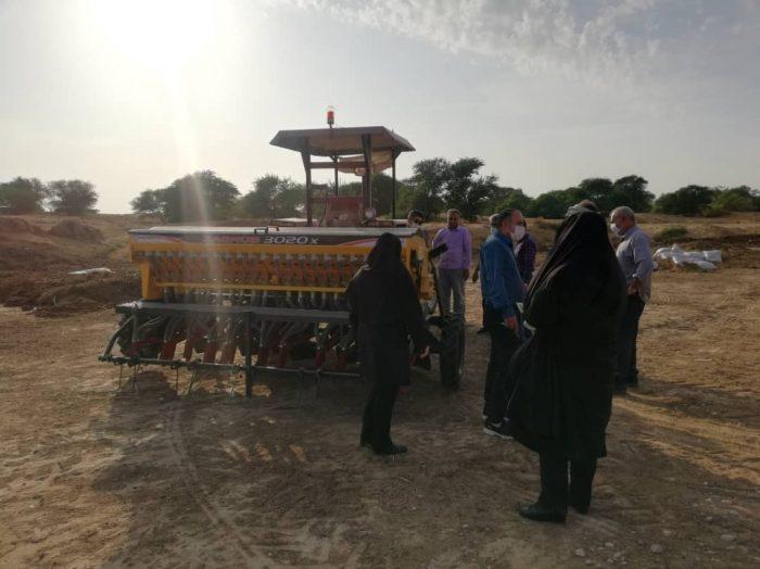 مدیر جهاد کشاورزی شهرستان امیدیه خبر داد: کشت مکانیزه با دستگاه کف کار برای اولین بار در امیدیه