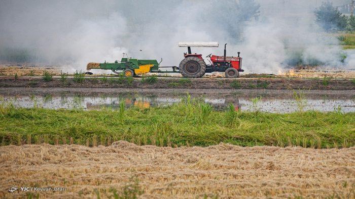 ویژه و مهم | بخش کشاورزی بهترین جایگزین نفت /راهکار توسعه صادرات غیر نفتی چیست؟