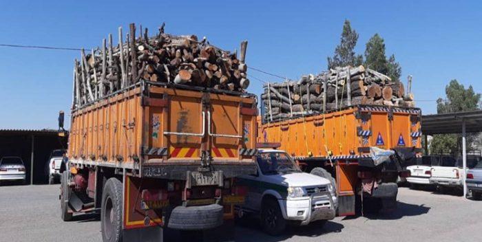 کشف ۱۰ تن چوب قاچاق در حمیدیه