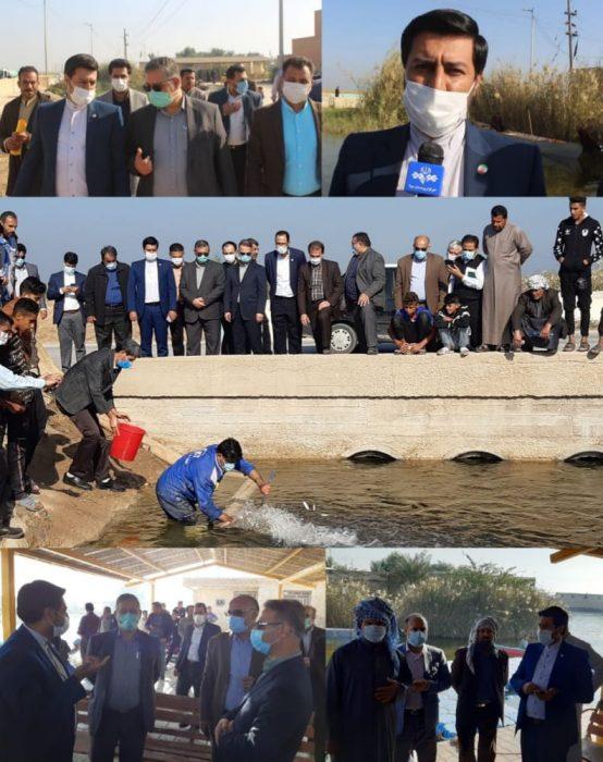 ۸۰ هزار قطعه بچه ماهی در تالاب شادگان رهاسازی شد