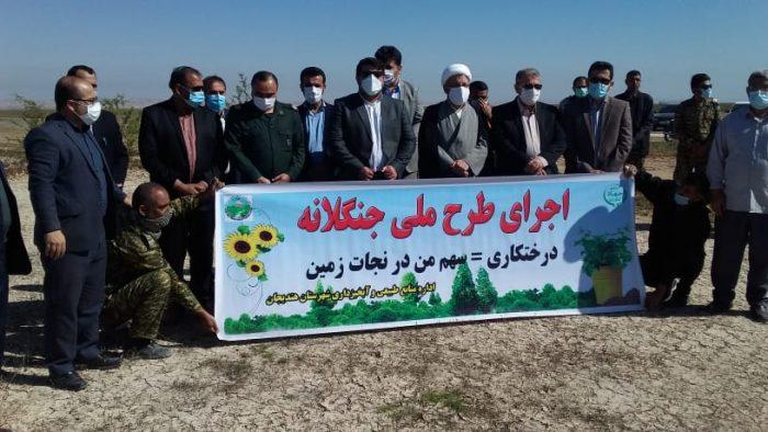 کشت بیش از۲۰۰اصل نهال کهور درمنطقه روستای چم مرادشهرستان هندیجان