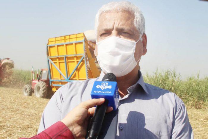 ثبت پنجمین رکورد برداشت نیشکر و استحصال شکر در کشت و صنعت امام خمینی (ره) شوشتر