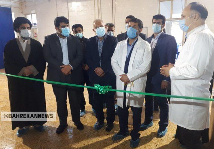 پروژه فیبر نوری هندیجان شهر زهره کلنگ زنی شد