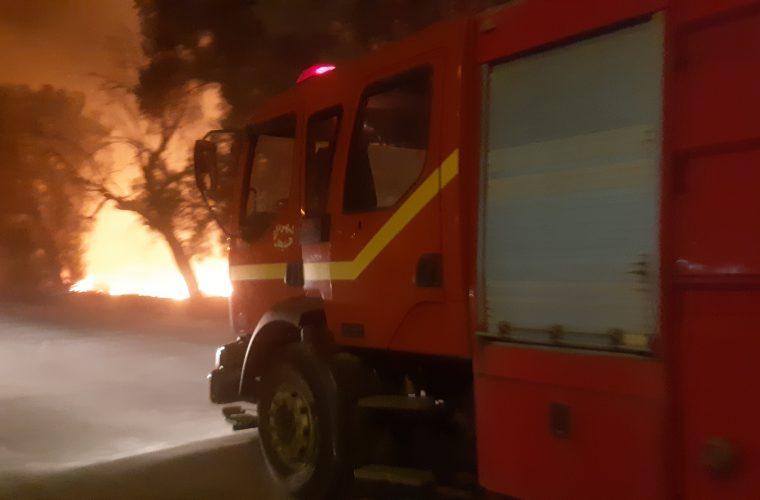 رئیس آتش نشانی هندیجان خبر داد: آتش سوزی درضلع غربی هندیجان جنوبی مهار وکنترل شد