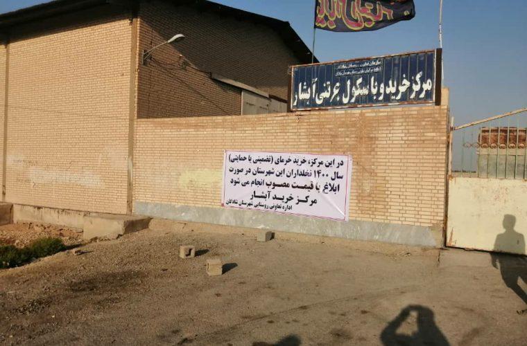 اعلام آمادگی ۳ مرکز خرید خرما در شهرستان شادگان